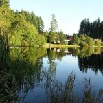 Millersylvainia State Park - Olympia, WA - Washington State Parks