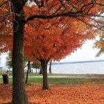 Leesylvania State Park - Woodbridge, VA - Virginia State Parks