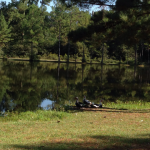Abita Springs RV Resort  - Abita Springs, LA - RV Parks