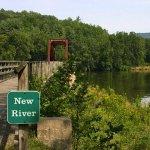 New River State Park - Laurel Springs, NC - North Carolina State Parks