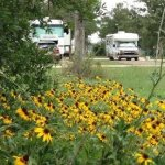 The Oaks RV Park and Campground - Cedar Creek, TX - RV Parks