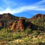 Justin's Diamond J RV Park - Tucson, AZ - RV Parks