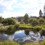 Elk Creek Campground & RV Resort - Grand Lake, CO - RV Parks