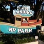 Moss Landing KOA RV Park - Moss Landing, CA - KOA