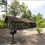 Givhans Ferry State Park - Ridgeville, SC - South Carolina State Parks