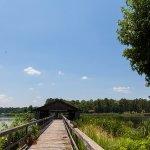 Cypress Black Bayou Recreation - Benton, LA - RV Parks