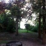 Oak Thicket Park Lake Fayette - Fayetteville, TX - RV Parks