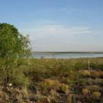 Brantley Lake State Park - Carlsbad, NM - New Mexico State Parks