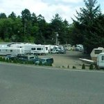 Big Spruce RV Park - Tillamook, OR - RV Parks