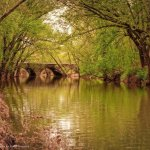 Sleep Creek On The Potomac - Martinsburg, WV - RV Parks