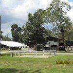 Whites Park - Wallisville, TX - Free Camping