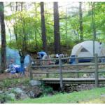 Montebello Camping & Fishing Resort - Montebello, VA - RV Parks