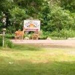 Sandy Hill Campground - Augusta, WI - RV Parks