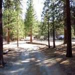 Hartley Springs Campground - June Lake, CA  - Free Camping
