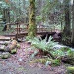 Dosewallips State Park - Brinnon, WA - Washington State Parks