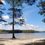 Lake Massasecum Park & Campground - Bradford, NH - RV Parks