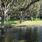Winterset Travel Trailer Park - Palmetto, FL - RV Parks
