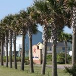 Stella Mar RV Resort - Galveston , TX - RV Parks