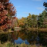 Boston Minuteman Campground - Littleton, MA - RV Parks