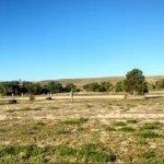 Elbert County Fairgrounds - Kiowa, CO - County / City Parks