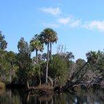 Econfina River State Park - Econfina, FL - Florida State Parks