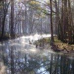 Florida Caverns State Park - Marianna, FL - Florida State Parks