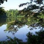 Crown International  Campground - Fort Mill, SC - RV Parks