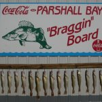 Parshall Bay - Parshall, ND - County / City Parks