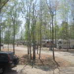 CarrollWoods RV Park @ Grapefull Sisters Vineyard  - Longs , SC  - RV Parks