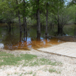 Webb Landing Recreation Area - Jay, FL - Free Camping