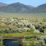 Mill Creek Recreation Area - Battle Mountain, NV - Free Camping