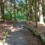 Penn Roosevelt State Park - Huntingdon, PA - Pennsylvania State Parks
