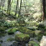 Rocky Gap State Park - Flintstone, MD - Maryland State Parks
