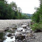 Bogachiel State Park - Forks, WA - Washington State Parks