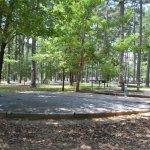 Piney Point Campground - Texarkana, TX - County / City Parks