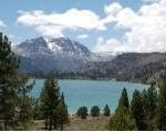 Oh Ridge Campground Inyo National Forest - Oh Ridge, CA - National Parks