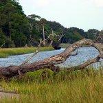 Fort George Island Cultural State Park - Jacksonville, FL - Florida State Parks