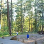 Rainbow Campground Apache-Sitgreaves National Forest -  Springerville, AZ - National Parks