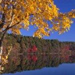 Lake Bob Sandlin State Park - Pittsburg, TX - Texas State Parks