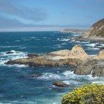 Sonoma Coast State Park - Bodega Bay, CA - California State Parks