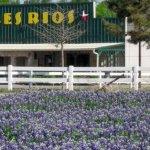 Tres Rios RV Resort - Glen Rose, TX - RV Parks
