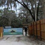 Suwannee Valley Campground - White Springs, FL - RV Parks