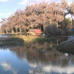 Twin Lakes Fish Camp - Hawthorne, FL - RV Parks