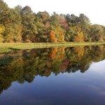 Flint River RV Park - Bainbridge, GA - RV Parks