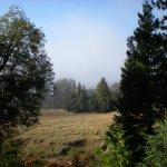 Palomar Mountain State Park - Palomar Mountain, CA - California State Parks