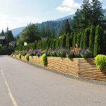 Cultus Lake Thousand Trails RV Resort - Lindell Beach, BC - Thousand Trails Resorts