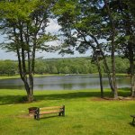 Tanglewood Camping - Covington, PA - RV Parks
