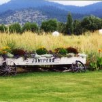 Junipers Reservoir RV Resort - Lakeview, OR - RV Parks