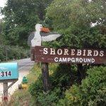 Shorebirds Campground - Ocean View, NJ - RV Parks