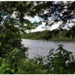 Camping Lac Saint-Michel - Trois-Rivières, QC - RV Parks